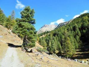 Trekking Monviso Arve