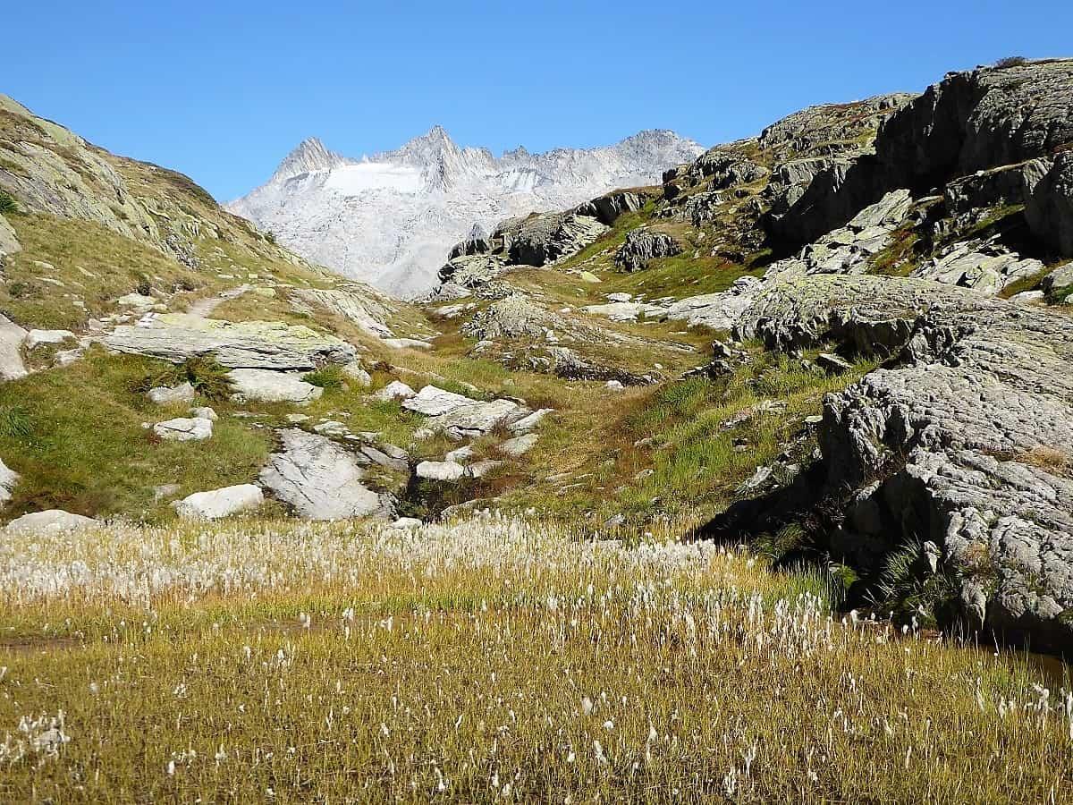 Projekt-Woche Alpenlernen Bächlitalhütte Bächlisboden 1