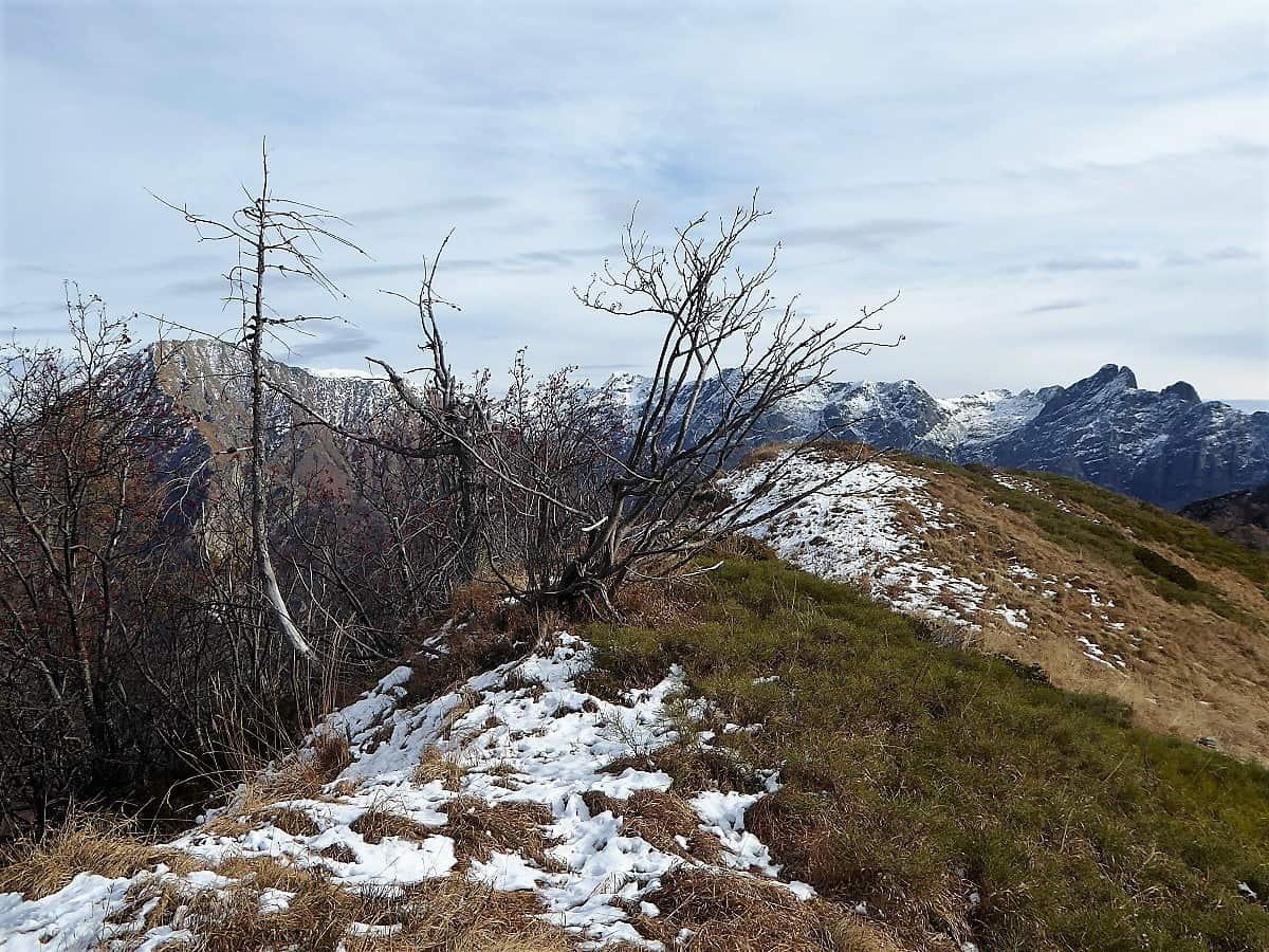 Trekking Val Grande 2