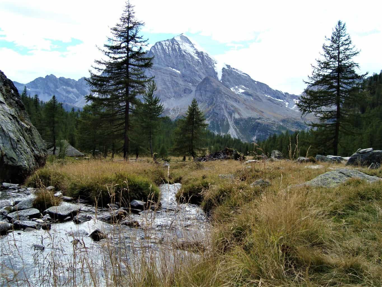 Trekking Bortelhütte-Veglia 3