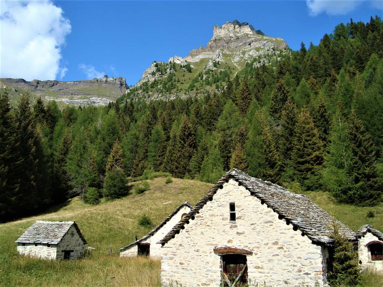 Trekking Bortelhütte-Veglia 6
