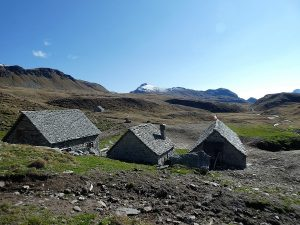 Alpe Forno Trekking Binntal-Devero
